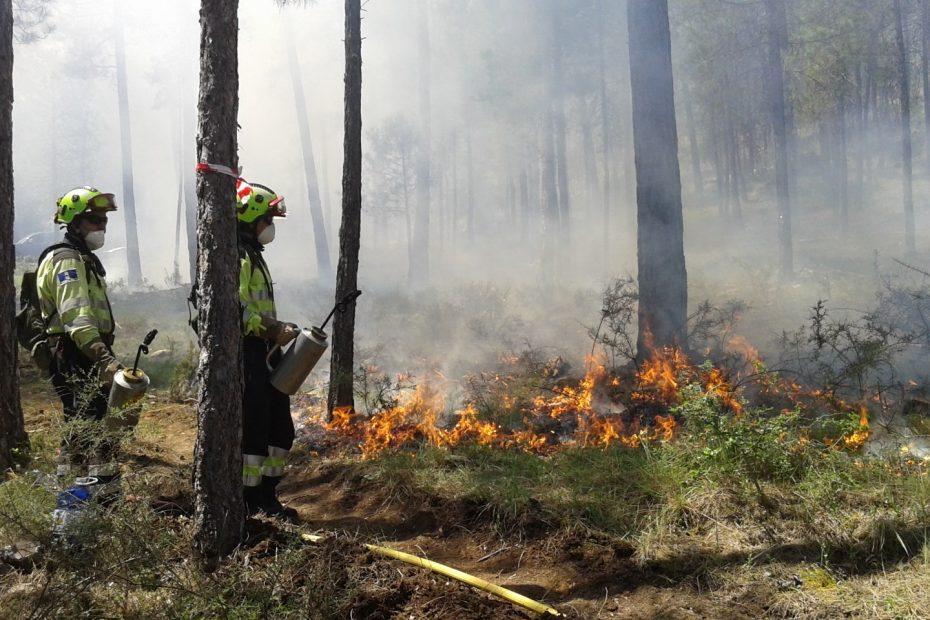 Imagen de una quema controlada