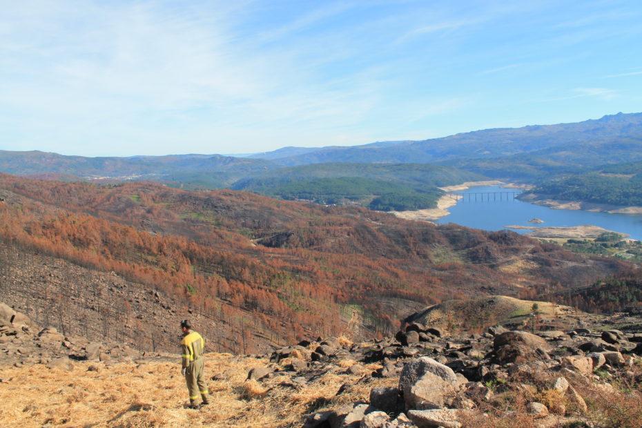 Trabajos de restauración de suelos quemados en el Parque Natural del Xurés. 2016